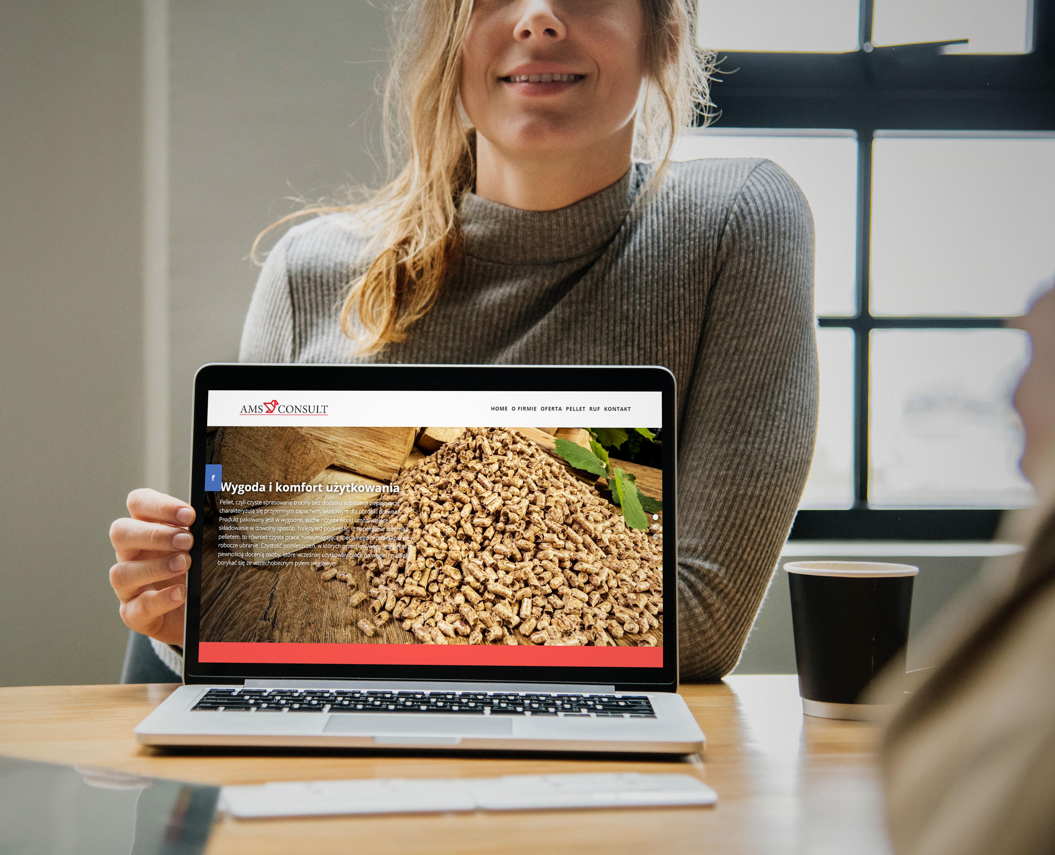 Strona internetowa pellethurt.pl dla AMS Consult